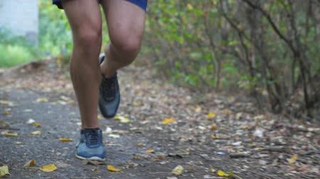 trilha : Close up legs of sporty man running along trail in early autumn forest. Male feet of young athlete jogging along path at nature. Strong sportsman exercising outdoor. Healthy active lifestyle. Slow mo