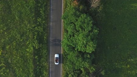 kabriolet : Aerial shot of white convertible car riding through empty rural road. Four young unrecognizable women travelling at cabriolet. Flying over auto driving at countryside road on summer day. Slow motion