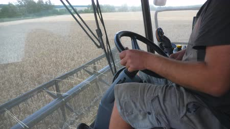 verim : Close up of male hand holding steering wheel and controlling combine during harvest. Unrecognizable farmer working in field on harvester. View on process of gathering wheat from inside cabin. Slow mo