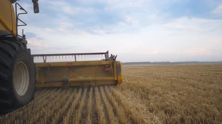 verim : View from right side of combine working in grain field. Harvester slowly riding through countryside gathering crop of ripe wheat. Concept of food industry or harvesting. Slow motion