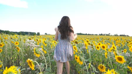 подсолнухи : Unrecognizable beautiful girl running on yellow sunflower field. Happy young woman jogging through the meadow during summer day. Freedom leisure concept. Slow motion