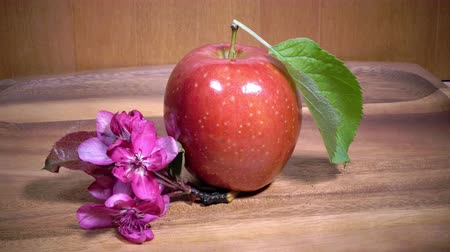 crimson : red ripe apple and crimson apple tree flowers on wooden background
