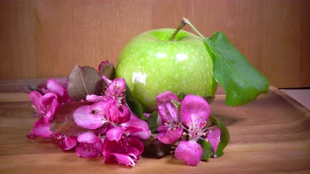 crimson : Apple tree flowers white and crimson with leaves and green ripe apple