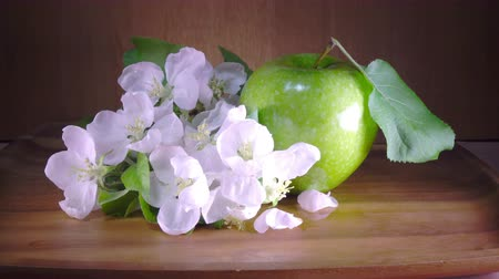 Apple tree flowers white and crimson with leaves and green ripe apple