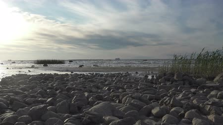 The stony seashore during sunset. Gulf of Finland