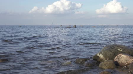 stony : Lakhta Center through the Gulf of Finland in summer sunny day Stock Footage