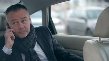inside cars : Businessman waiting for his partner in the back seat of the car and talking on the phone Stock Footage