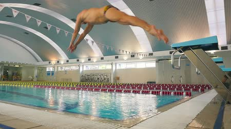 potápění : The swimmer in slowmotion jumps from the diving board in the swimming pool Dostupné videozáznamy