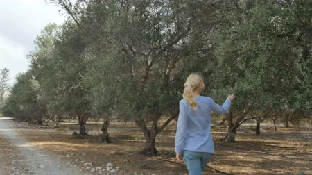 olivový olej : A woman is walking on an olive plantation Dostupné videozáznamy