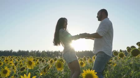 drží se za ruce : In love couple is circling holding hands at the sunflower field during sunset Dostupné videozáznamy