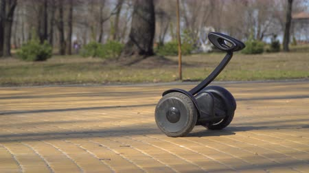 gyroscope : Gyroscope in the park Stock Footage