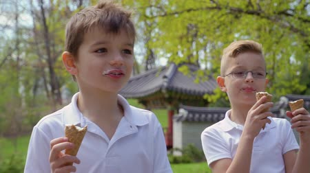 восхищенный : Two cute boys eats ice cream in park