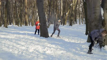uç : Cute brothers play snowballs in winter park Stok Video