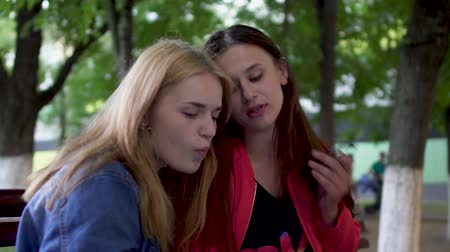 atender : Two girls are chatting at the park Stock Footage