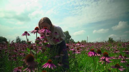 temperada : Beautiful young girl smelling flowers on a flower field