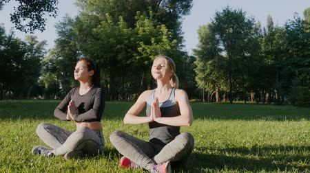 legginsy : Two beautiful girls doing yoga outdoors