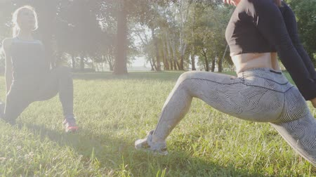 legginsy : Two beautiful girls doing morning exercises in the park Wideo
