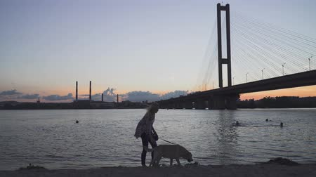 žehlení : Beautiful girl walks with a dog on the river bank