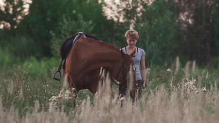 верхом : Young girl is holding the horse for the reins
