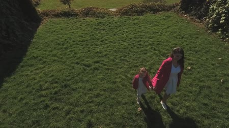 benzer : Mom and her small daughter walk in the park. Shot on drone