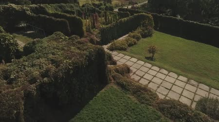 altura : The view from the height on a beautiful park. Shot on drone Stock Footage
