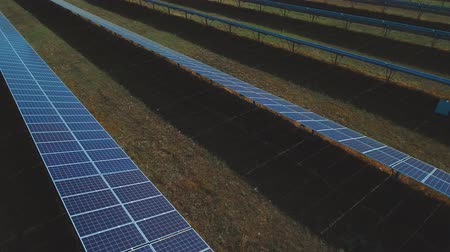 enviroment : Sunbeam walking on the solar panel. Shot on drone