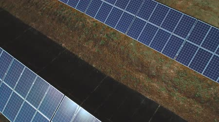 enviroment : Solar panels with sun light shining. Shot on drone