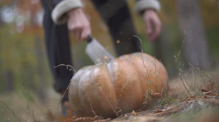 ритуал : Halloween. Man chops a pumpkin with a butcher knife. Стоковые видеозаписи