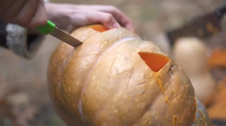korku : Halloween. Male hands carve a halloween pumpkin. Stok Video