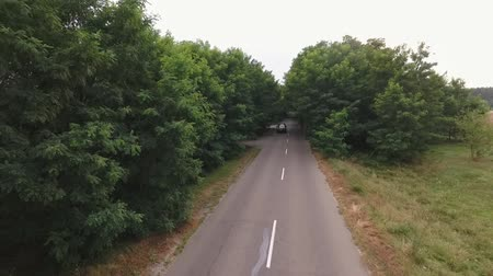 аллея : Car is riding countryside road People are travelling by car Shooting from the drone