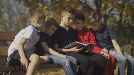 acceptance : Five boys sitting on the bench and riding one magazine. Friends spend time in big company on a sunny day in the autumn park. Stock Footage