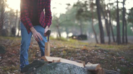 топор : Man chops wood with axe in the forest. Forester cuts wood.
