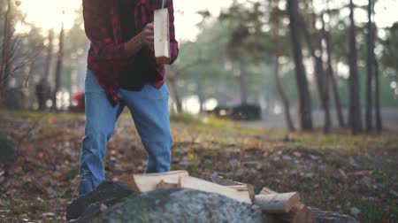 klín : Man chops wood with axe in the forest. Forester cuts wood. Wood chopping. Slow motion.