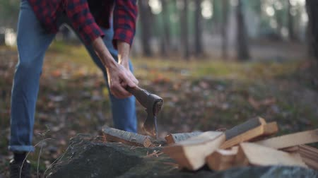топор : Man chops wood with axe in the forest. Forester cuts wood. Wood chopping. Slow motion.