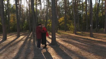 słoneczko : View from above on a couple embracing in a pine forest in sunset light. A loving interracial couple have a date and hugs. Shooting from the drone. Slow motion.