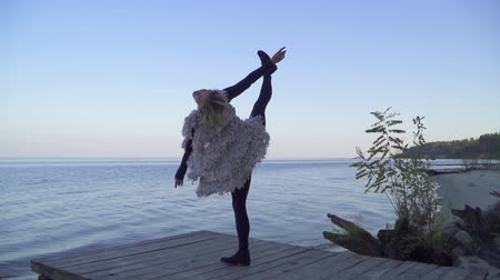 připevnění : Beautiful young caucasian woman in casual clothes dancing contemporary dance outdoors. Flexible girl in tight leggings dancing on a wooden platform on the background of the water surface.
