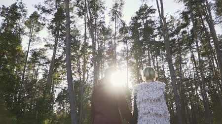 öykü : Young couple hold the hands and walking in a pine forest in the background of sunshine. Couple spends leisure time outdoors. Slow motion. Stok Video
