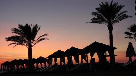time laps : Beautiful lounge zone on the cyprus beach with palm trees and tents at picturesque sunset background. Time laps