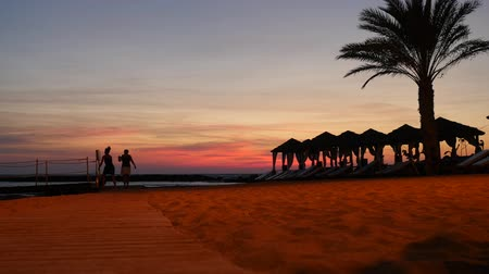 rests : Two women walk along lounge zone on the cyprus beach with palm trees and tents at picturesque sunset landscape