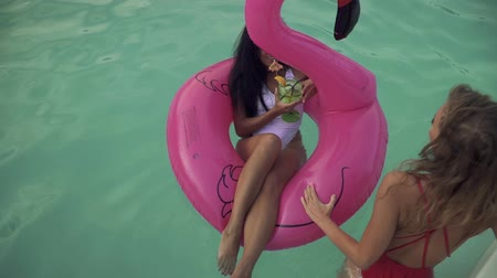 feliz : Top view of cute curly blonde having fun rolling inflatable flamingo with drinking coctail hot brunette on the azure water. Leisure and fun of girls.