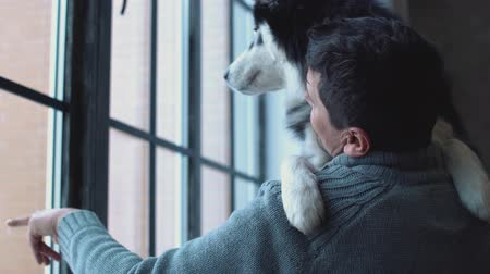 large breed dog : Cute man holds husky in his hands, smiles and shows with his hand at the view from the window Stock Footage