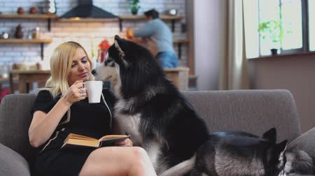 loajální : Woman sits on the couch, reads a book, drinks coffee and talks to the husky while her husband is cooking something in the kitchen