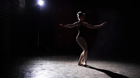 estatuária : Professional graceful flexible ballerina dancing on her pointe ballet shoes in spotlight on black background in studio. Ballet dancer shows classic ballet pas wearing tutu and pointe shoes. Slow motion.