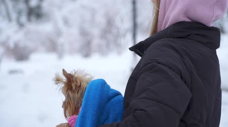 yorkie : Young girl walking with a yorkshire terrier in a winter snow-covered park holding a dog wrapped in a blue blanket. A teenager and a dog on a walk outdoors. Slow motion. Stock Footage