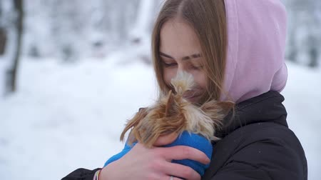 yorkie : Portrait of girl hugging small dog covered in blanket close up outdoors. Yorkshire terrier is cold. Slow motion.