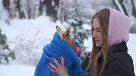yorkie : Portrait young girl holding a yorkshire terrier wrapped in a blue blanket on hands in a winter snow-covered park. A teenager and a dog on a walk outdoors. Slow motion.