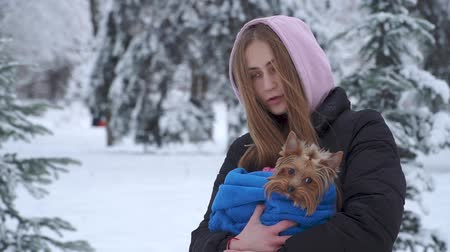 yorkie : Portrait pretty young girl holding a yorkshire terrier wrapped in a blue blanket on hands in a winter snow-covered park. A teenager and a dog on a walk outdoors. Slow motion.