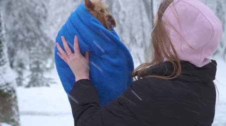 yorkie : Portrait pretty young girl with long hair holding a yorkshire terrier wrapped in a blue blanket on hands in a winter snow-covered park. Teenager and a pet on a walk outdoors. Snowing. Slow motion.