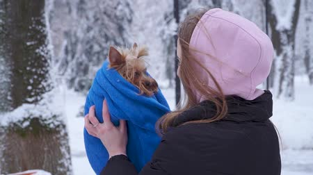 yorkie : Young woman raise up small dog covered in towel outdoors. Slow motion. Stock Footage