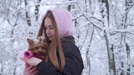 yorkie : Portrait cute young girl with long hair hugging a yorkshire terrier dressed in wool sweater holding dog on hands in a winter snow-covered park. Teenager and a pet on a walk outdoors. Slow motion.